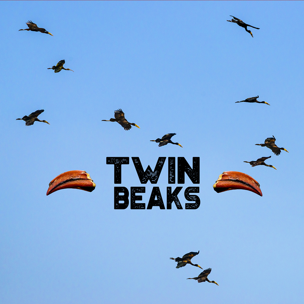 Twin Beaks exhibition flyer