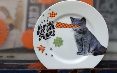 Cats & Snacks: Weekly News from PRSC